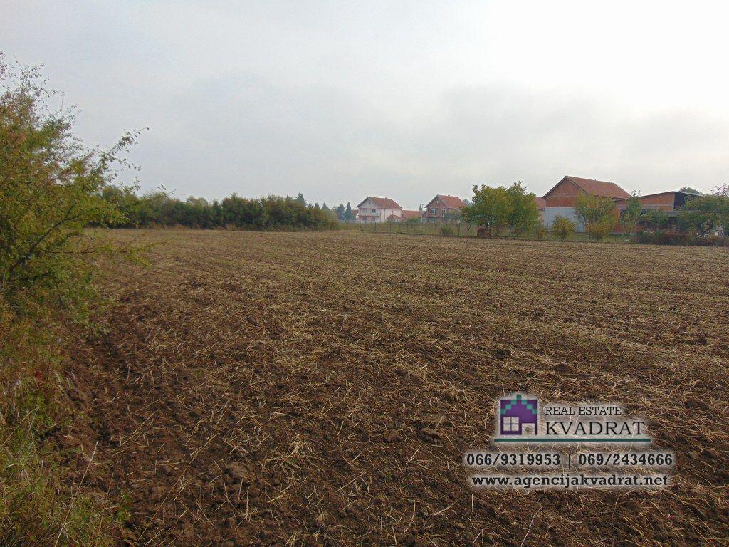 Građevinski plac 84 06 ari Obrenovac Veliko Polje 40 000